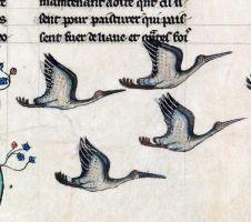 db8e73e000d01f6c477888f5623167b9--medieval-art-medieval-times