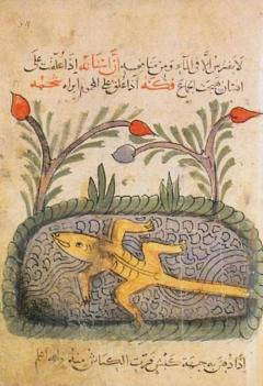 Kitab_Al_Hayawan1