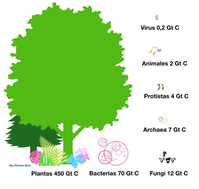 BiomasaTierra