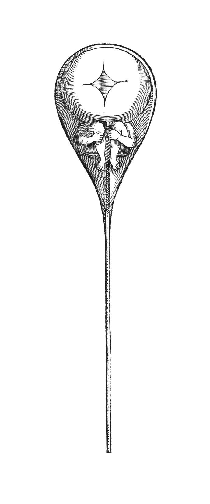 M0016638 N. Hartsoeker, Essay de dioptrique