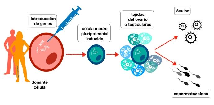 Blog Ciencia.001